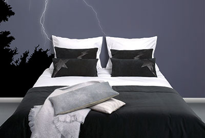The Thunder Bedroom