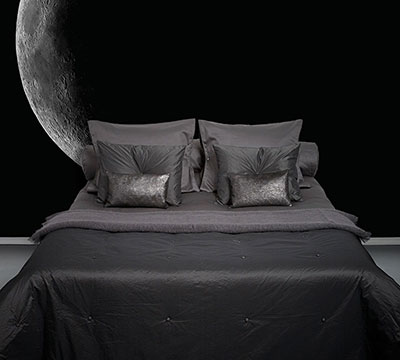 Into The Night Bedroom Moon